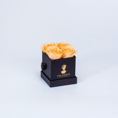 Tendresse Noire roses...