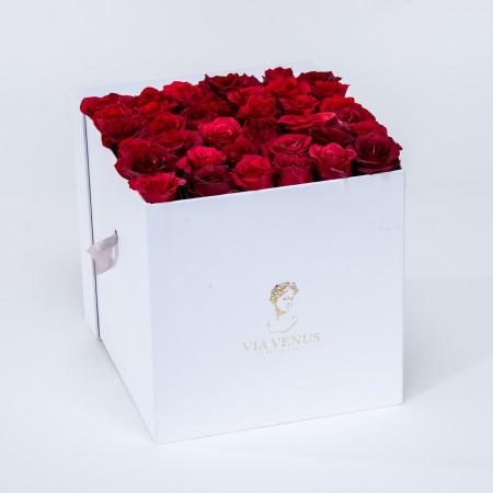 Frénésie Blanc roses rouges