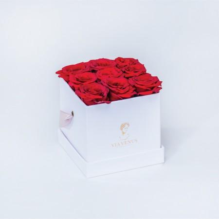 Délicatesse Blanche roses...