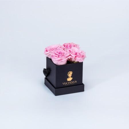 Tendresse Noire roses poudrées